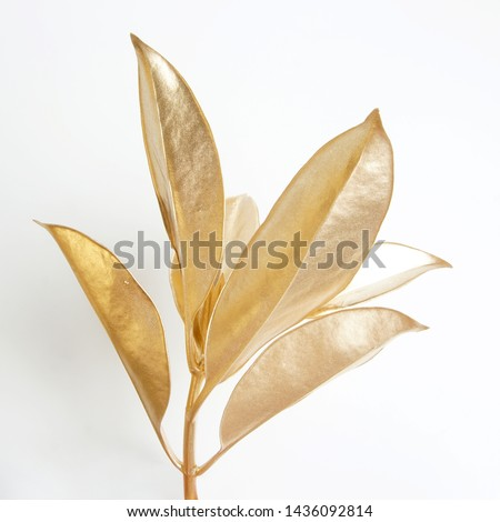 golden leaf design elements. Decoration elements for invitation, wedding cards, valentines day, greeting cards. Christmas decor Isolated on white background.                                #1436092814