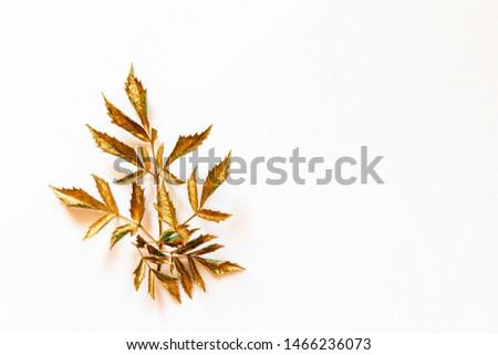 golden leaf design elements. Decoration elements for invitation, wedding cards, valentines day, greeting cards. #1466236073