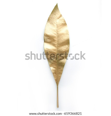 golden  leaf design elements. Decoration elements for invitation, wedding cards, valentines day, greeting cards. Isolated. #659366821
