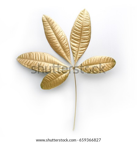 golden  leaf design elements. Decoration elements for invitation, wedding cards, valentines day, greeting cards. Isolated. #659366827