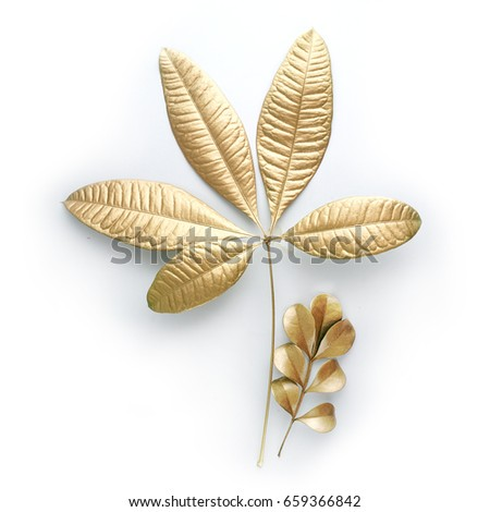 golden  leaf design elements. Decoration elements for invitation, wedding cards, valentines day, greeting cards. Isolated. #659366842