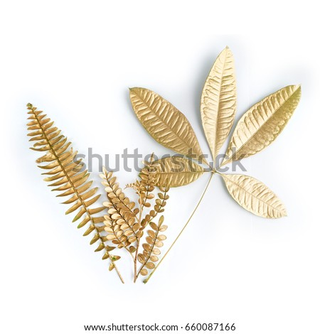 golden leaf design elements. Decoration elements for invitation, wedding cards, valentines day, greeting cards. Isolated on white background. #660087166