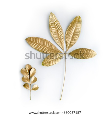 golden leaf design elements. Decoration elements for invitation, wedding cards, valentines day, greeting cards. Isolated. #660087187