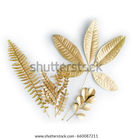 golden leaf design elements. Decoration elements for invitation, wedding cards, valentines day, greeting cards. Isolated on white background. #660087211
