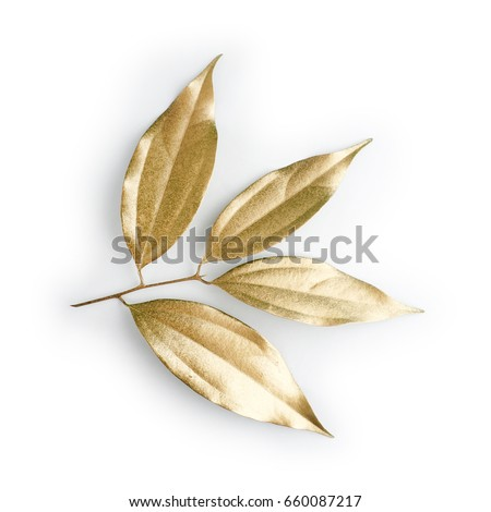 golden leaf design elements. Decoration elements for invitation, wedding cards, valentines day, greeting cards. Isolated on white background. #660087217