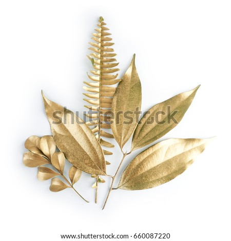 golden leaf design elements. Decoration elements for invitation, wedding cards, valentines day, greeting cards. Isolated on white background. #660087220