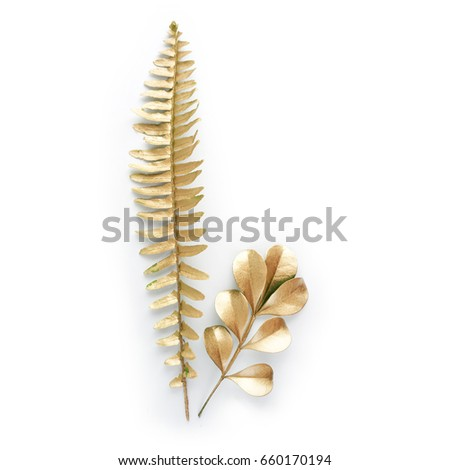 golden leaf design elements. Decoration elements for invitation, wedding cards, valentines day, greeting cards. Isolated on white background. #660170194