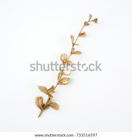 golden leaf design elements. Decoration elements for invitation, wedding cards, valentines day, greeting cards. Isolated. #733516597