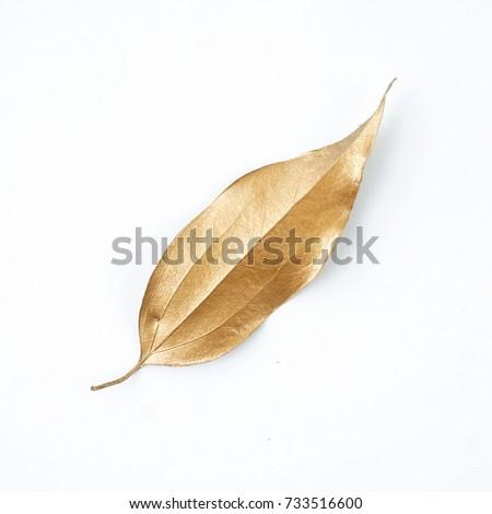 golden leaf design elements....