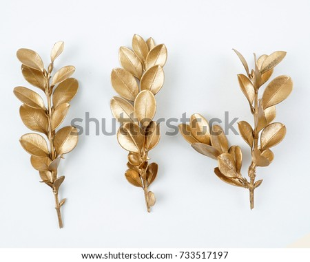 golden leaf design elements. Decoration elements for invitation, wedding cards, valentines day, greeting cards. Isolated on white background. #733517197