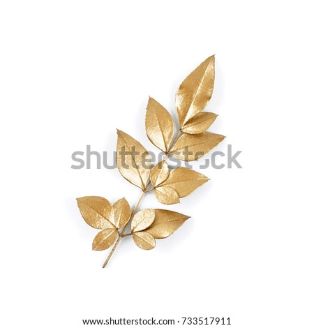 golden leaf design elements. Decoration elements for invitation, wedding cards, valentines day, greeting cards. Isolated. #733517911