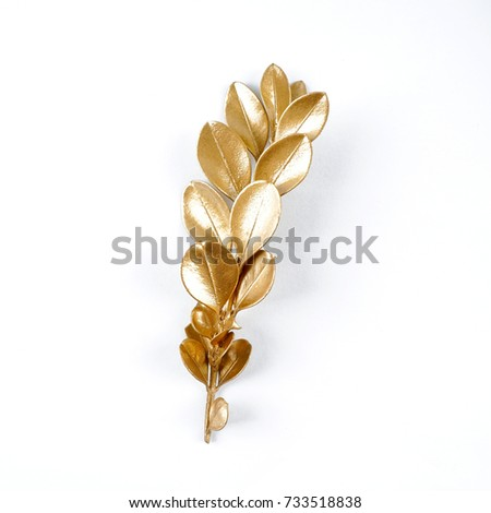 golden leaf design elements. Decoration elements for invitation, wedding cards, valentines day, greeting cards. Isolated. #733518838