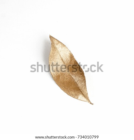 golden leaf design elements. Decoration elements for invitation, wedding cards, valentines day, greeting cards. Isolated. #734010799