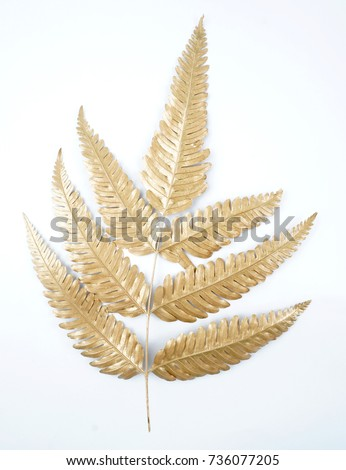 golden leaf design elements. Decoration elements for invitation, wedding cards, valentines day, greeting cards. Isolated. #736077205