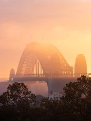 Golden light over the fog at Sydney Harbour Bridge.