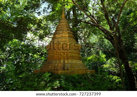 Golden pagoda in a rainforest #727237399