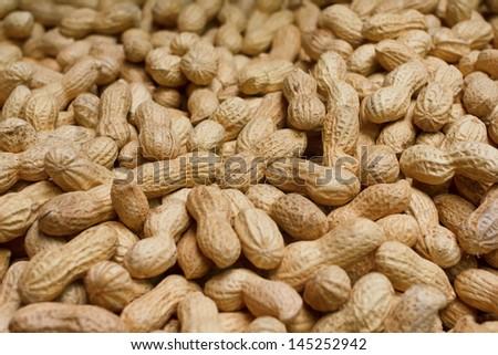 Golden peanuts in shells