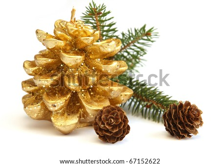 Golden pine cone and branch of Christmas tree