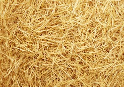 golden raw straw background