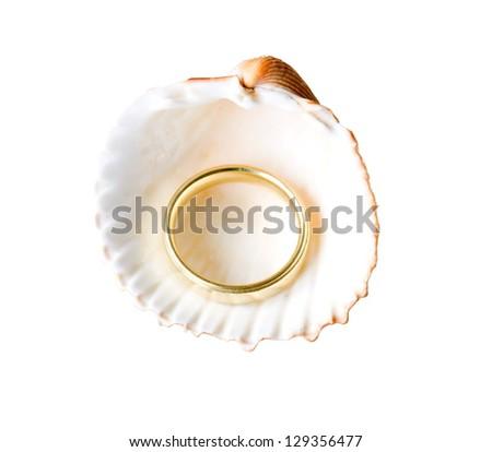 golden ring inside shell