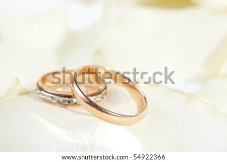 golden rings and  rose petals