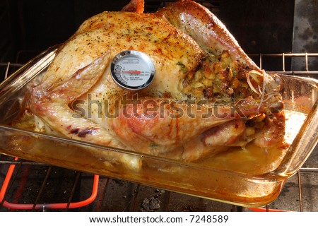 Golden Roasted Turkey in the oven with a meat thermometer.