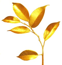 Golden sprouts. Business economy concept