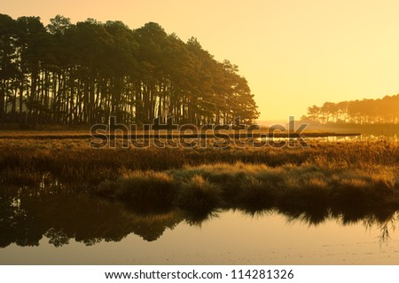 Golden Sunrise at Salt Marsh - Chincoteague National Wildlife Refuge, Virginia