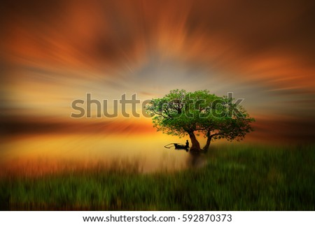 Golden Sunset #592870373