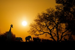 Golden sunset in South Africa with wild animals and safari truck in silhouette with copy space