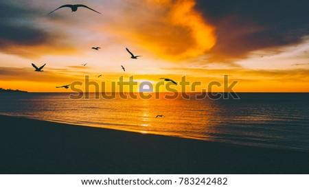 golden sunset over tranquil...