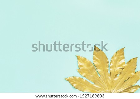 Golden tropical leaf on mint color  turquoise backdrop. Minimal autumn exotic concept with copy space. Copy space, top view.