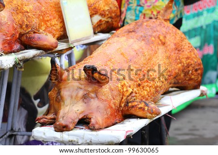 Golden whole roasted pig. Spit roasting is a traditional international luau method of cooking a whole pig.