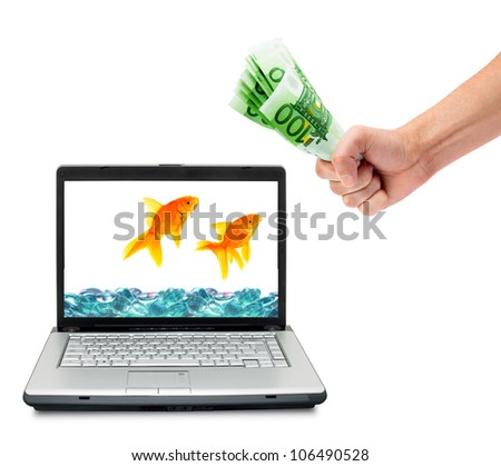 Goldfish and money in aquarium  isolated on a white background