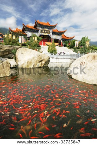 Goldfish in front of a Buddhist temple in Yunnan, China