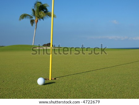 Golf ball and hole at a beautiful beach resort golf course