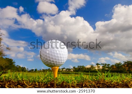 golf ball and tee from ground level