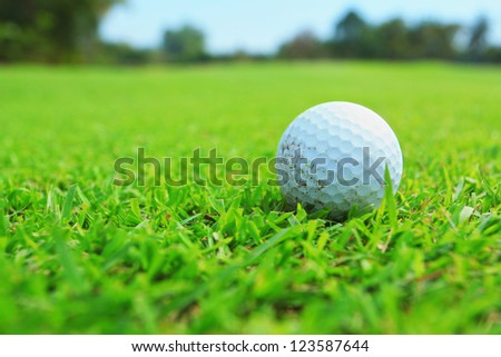 golf ball in fairway
