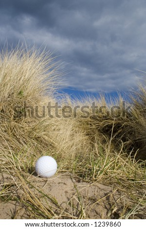 Golf ball in the rough at an English links golf course.