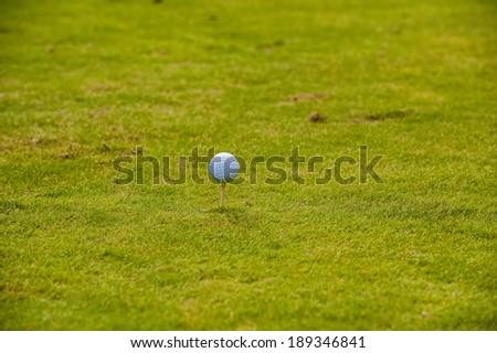Golf ball lying in the fairway Zdjęcia stock ©