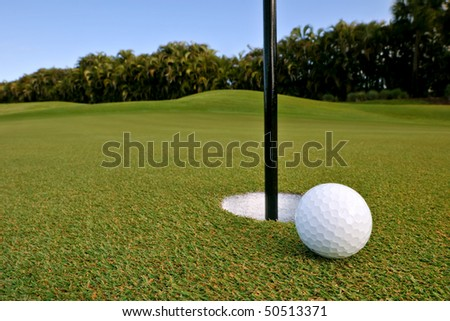 golf ball near pin and cup of green of florida tropical course