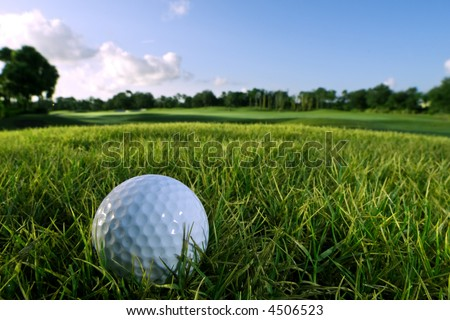 golf ball on fairway in early morning