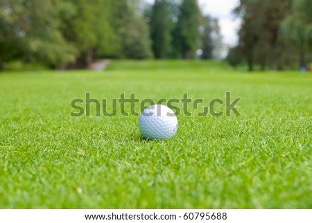 Golf ball on green over a blurred green. Shallow depth of field. Focus on the ball.