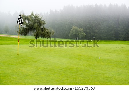 golf ball on green with target flag on beautiful golf course