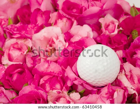 golf ball on rose background