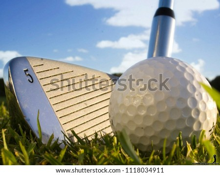 Golf ball on tee ready to be shot on the green golf course with putter.Golf is a club and ball sport in which players use various clubs to hit balls into a series of holes on a course in few strokes.