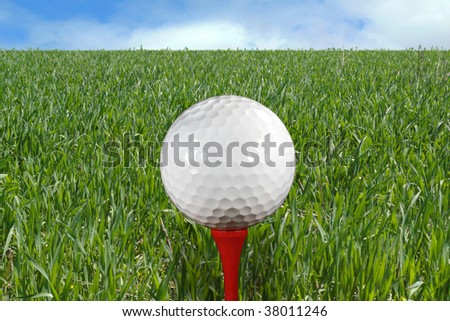 Golf Ball on Tee with green grass and blue sky in the background