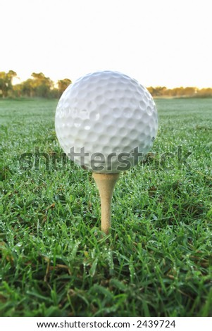 golf ball on tee with morning dew covering grass