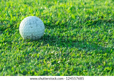 Golf ball on the grass on the golf course.