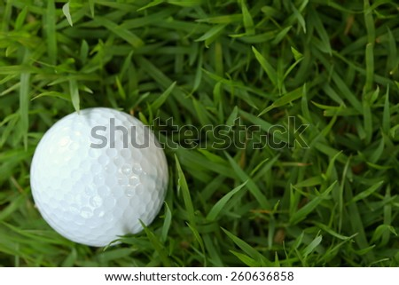 Golf ball pose on green grasses among sunset low light tone represent the golf sport concept and related idea.